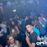 160812_apfelbaum_goes_open_air_freitag_033