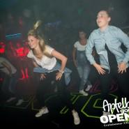 160812_apfelbaum_goes_open_air_freitag_081
