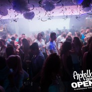 160812_apfelbaum_goes_open_air_freitag_116