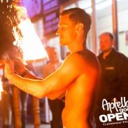 160812_apfelbaum_goes_open_air_freitag_141