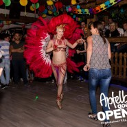 160813_apfelbaum_goes_open_air_freitag_087