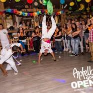 160813_apfelbaum_goes_open_air_freitag_138