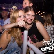 160813_apfelbaum_goes_open_air_freitag_158