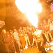 160813_apfelbaum_goes_open_air_freitag_186