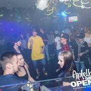 160812_apfelbaum_goes_open_air_freitag_036