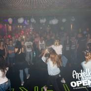 160812_apfelbaum_goes_open_air_freitag_107