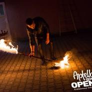 160812_apfelbaum_goes_open_air_freitag_134