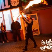 160812_apfelbaum_goes_open_air_freitag_136