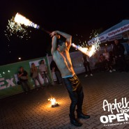 160812_apfelbaum_goes_open_air_freitag_144