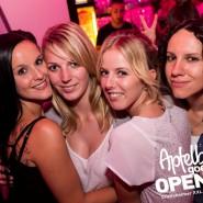 160813_apfelbaum_goes_open_air_freitag_012