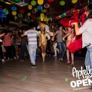 160813_apfelbaum_goes_open_air_freitag_082