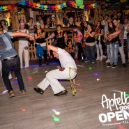 160813_apfelbaum_goes_open_air_freitag_131