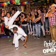 160813_apfelbaum_goes_open_air_freitag_137