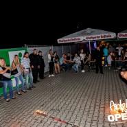 160813_apfelbaum_goes_open_air_freitag_172