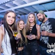 160813_apfelbaum_goes_open_air_freitag_191